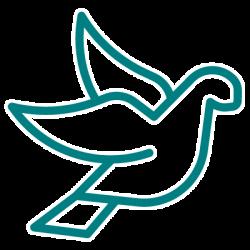entomotexniki_pigeon-10